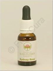 Australian Bush Flower essence - australische Buschblüten Essenzen