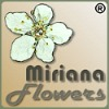 MiraFlowers Bachbl�ten